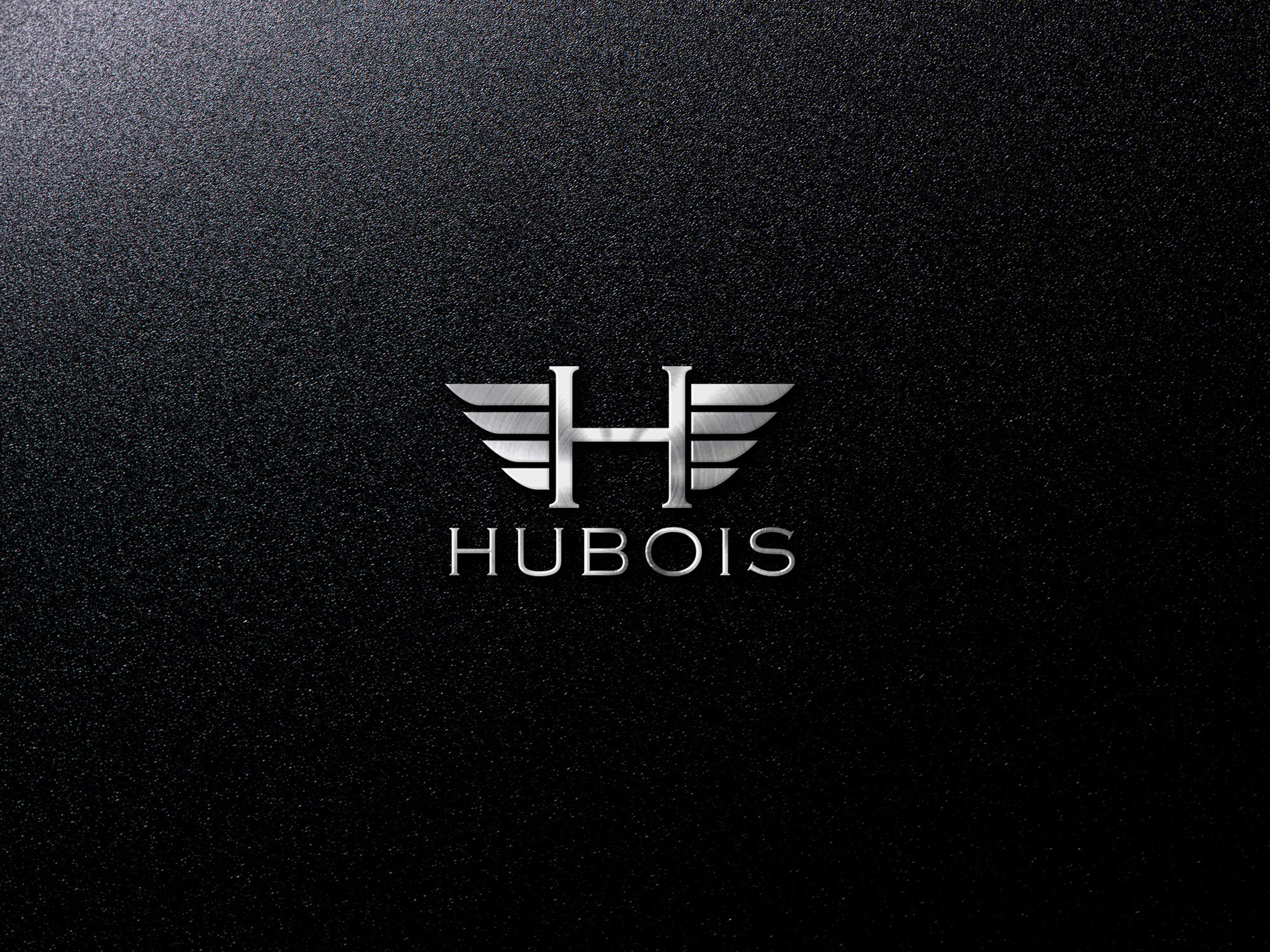 Hubois Logo Design Project